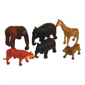 Miękkie zwierzęta z Afryki