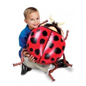 Insekty modele - 5 szt.
