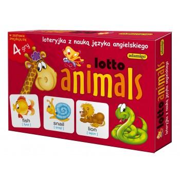 Lotto animals - 4 gry do nauki języka angielskiego Adamigo
