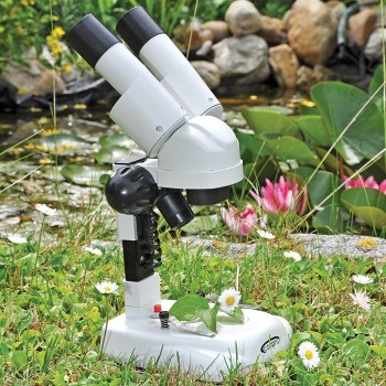 Mikroskop dla początkujących
