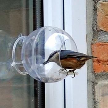 Zestaw mały ornitolog