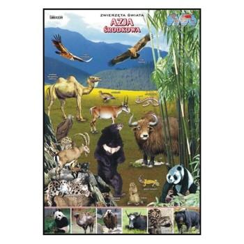 Plansze - występowanie zwierząt - Azja Środkowa