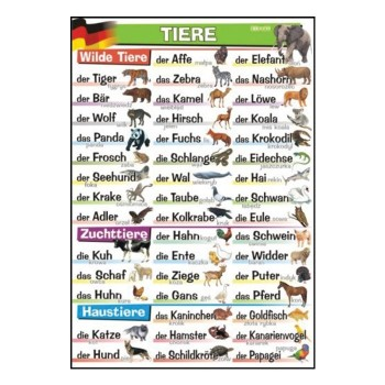 Plansze tematyczne - J. niemiecki - Tiere