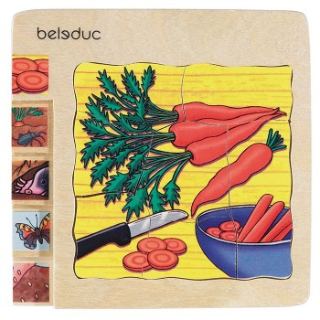 """Puzzle """"Jak rośnie marchewka?"""" Beleduc"""