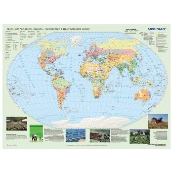 Mapa gospodarcza świata - rolnictwo i użytkowanie gleby