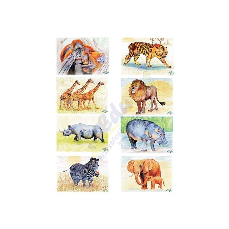 """Plansze do gry """" Odkrywaj i zgaduj"""" - dzikie zwierzęta"""
