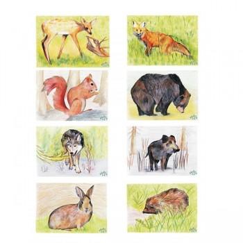 """Plansze do gry """" Odkrywaj i zgaduj"""" - zwierzęta leśne"""